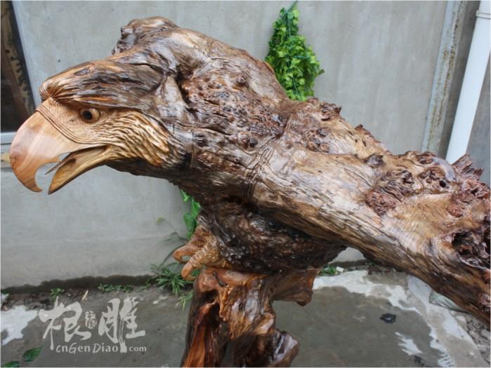 根雕欣赏-大叶樟树瘤根艺老鹰