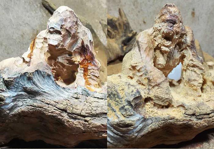 顶级崖柏根雕作品创作过程 金刚